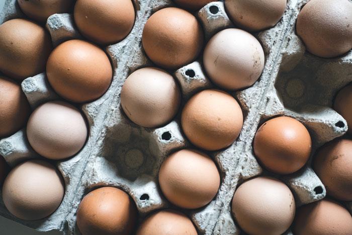 Eier in Eierschachtel