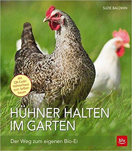 Hühner halten im Garten: Der Weg zum eigenen Bio-Ei