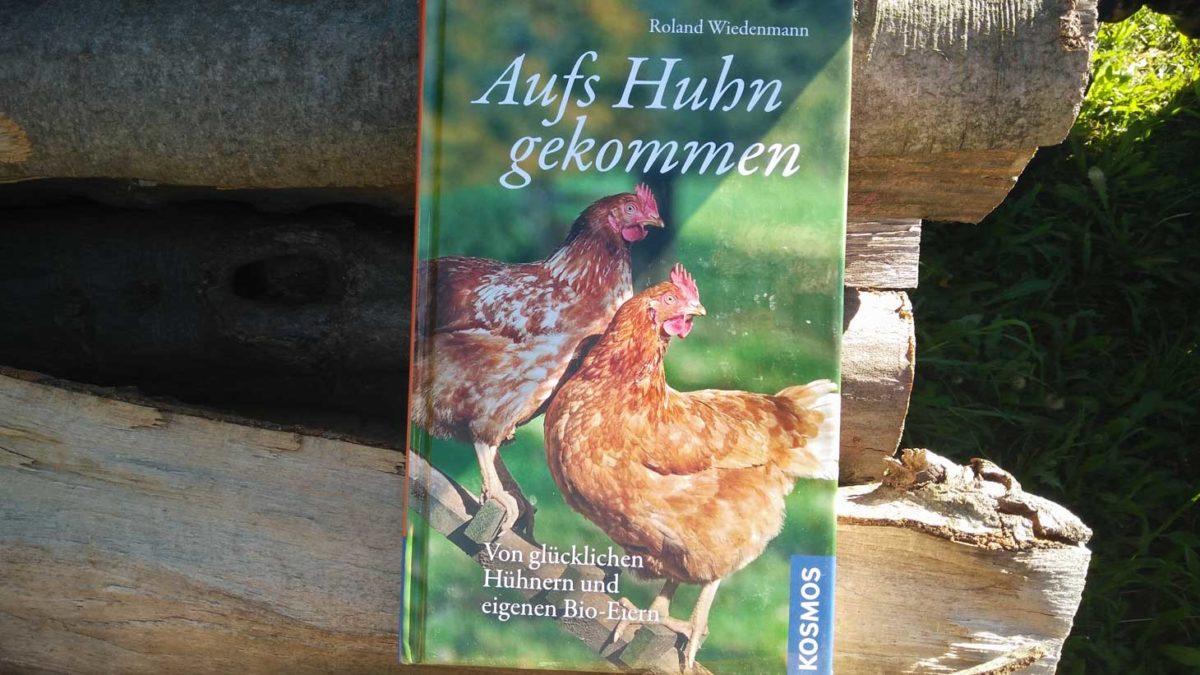 Aufs Huhn gekommen
